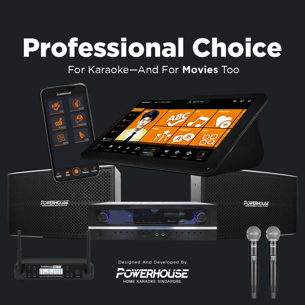 Professional Choice Home Karaoke with Professional Microphones